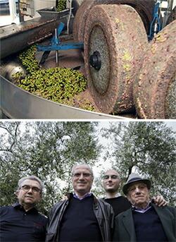 伝統の石臼挽きによるオリーブオイルづくリ。