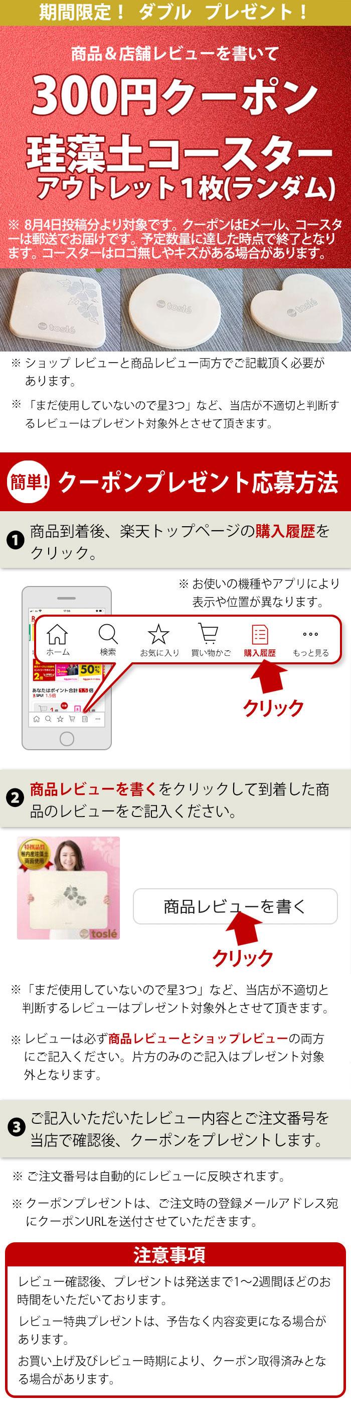 レビューを書いて500円割引クーポン