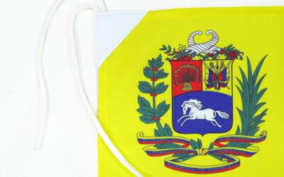 国旗の紋章部分拡大図