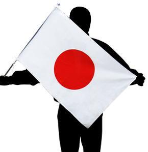 国旗セット マンション用