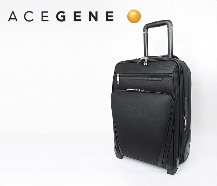 エースジーン ACEGENE プログリットSi