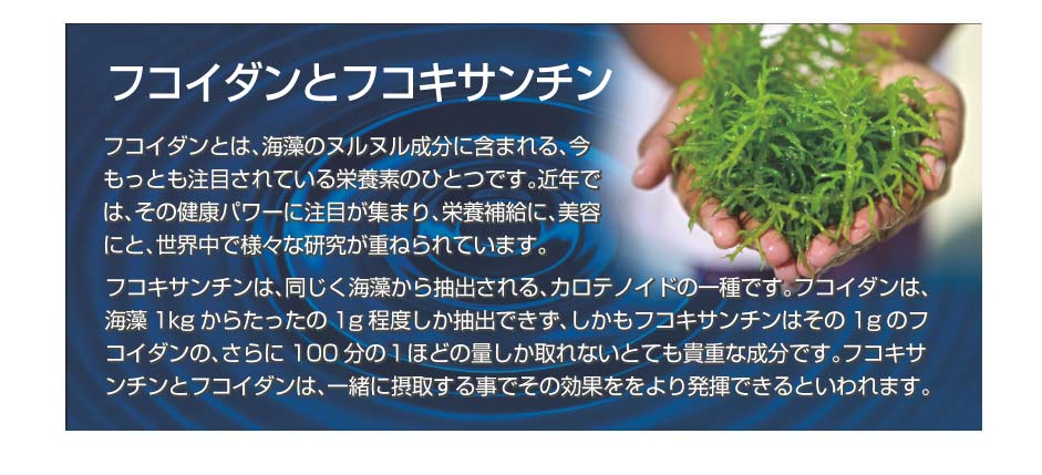 フコキサンチンは、同じく海藻から抽出される、カロテノイドの一種です。フコイダンは、海藻1kgからたったの1g程度しか抽出できず、しかもフコキサンチンはその1gのフコイダンの、さらに100分の1ほどの量しか取れないとても貴重な成分です。フコキサンチンとフコイダンは、一緒に摂取する事でその効果ををより発揮できるといわれます。