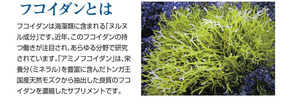 低分子海藻エキス・アミノフコイダン「アミノフコイダンは、独自技術で抽出したフコイダン含有海藻エキスに、ハチミツ・ビタミン類を加えた健康サポート飲料です。」