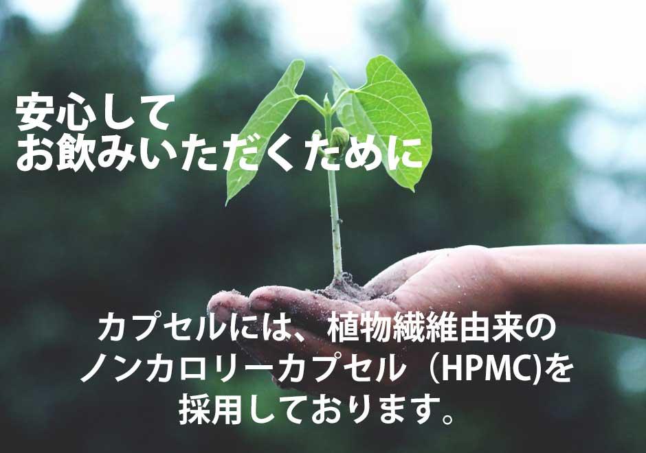 安心してお飲みいただくために。カプセルには植物繊維由来のノンカロリーカプセル(HPMC)を採用しております。