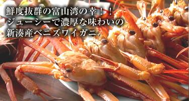鮨蒲本舗 河内屋 鮨蒲 6本入