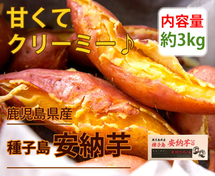 鹿児島県種子島産 さつまいも 安納芋