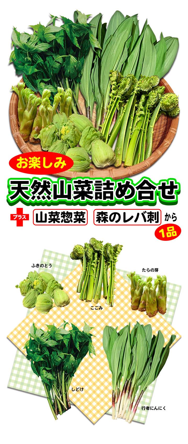 お楽しみ天然山菜セット
