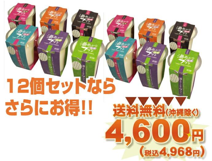 12個セット送料無料4600円