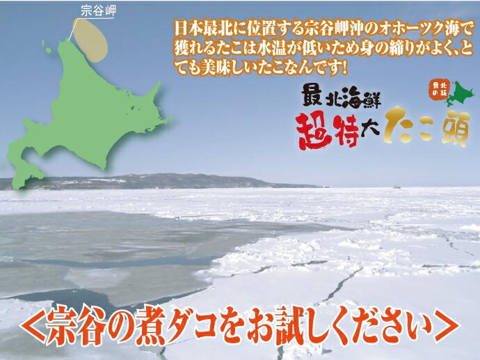 NHK番組「あさイチ」でも紹介された宗谷のタコ♪