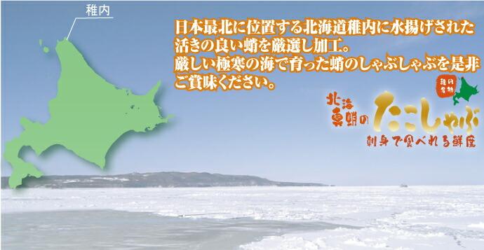 たこしゃぶに使うタコは日本最北端、宗谷の海峡で獲れた新鮮な生蛸を厳選してるから、身がとってもプリプリコリコリなんです♪