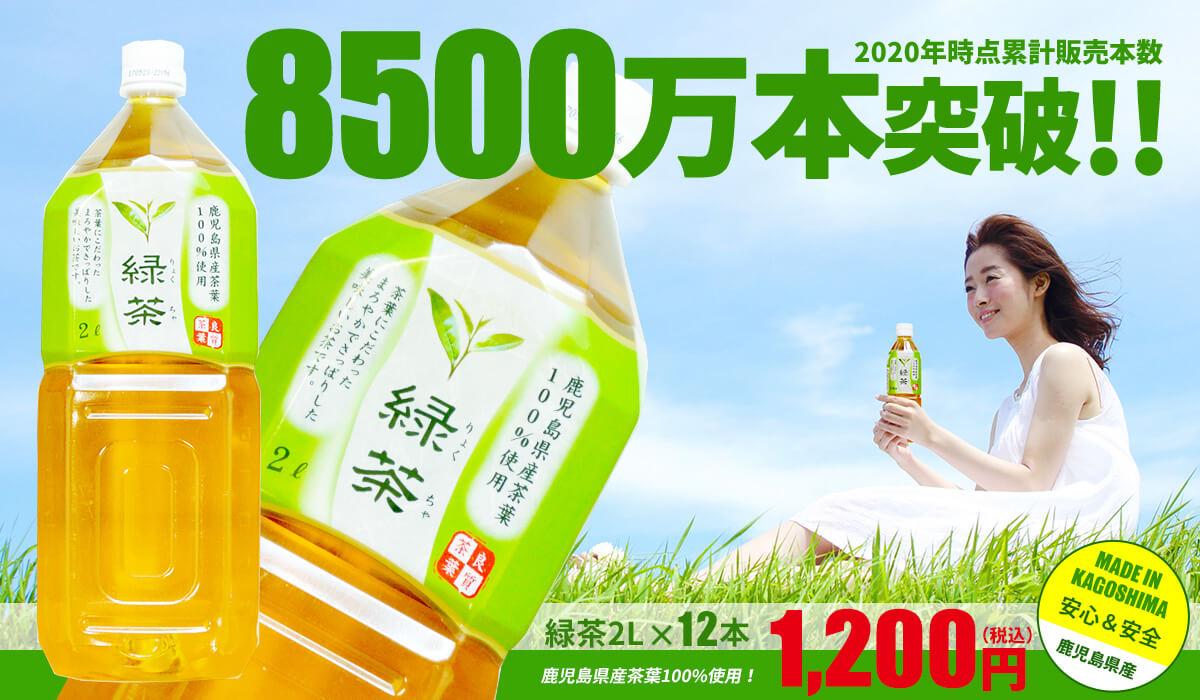 トライアル緑茶2l