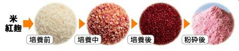 紅麹,紅麹サプリメント,紅麹サプリ,モナコリンK