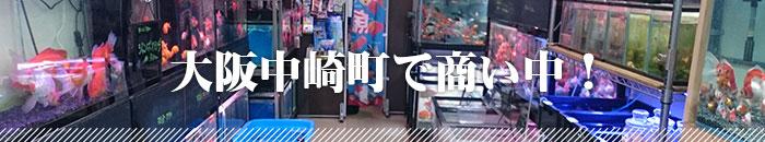 大阪中崎町で商い中!