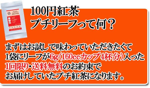 100円プチリーフ