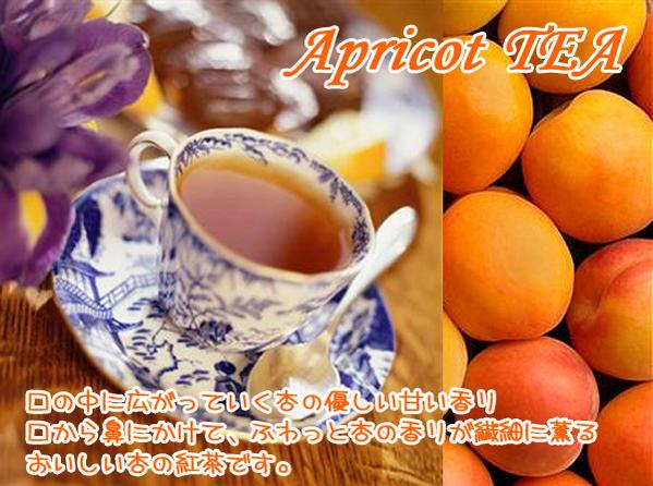 杏子アプリコット紅茶
