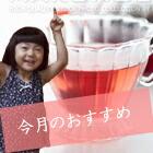 今月のおすすめ紅茶