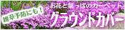 雑草予防&お花のカーペット