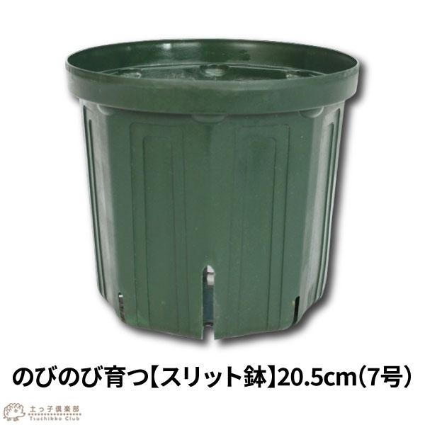 のびのび育つ【スリット鉢】20.5cm(7号)