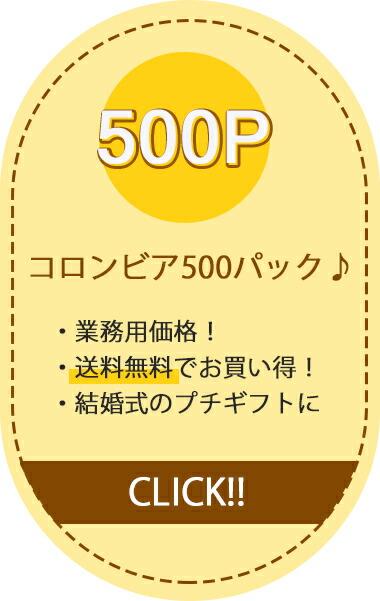 CC500P