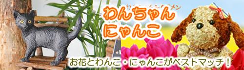 わんちゃんシリーズ