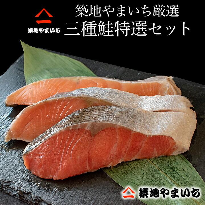 トラウト 塩鮭 鮭切り身 紅鮭 天然鮭 天然紅鮭 キングサーモン