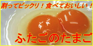 ふたごたまご 二黄卵