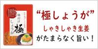 坂田信夫商店 味付け 極しょうが 110g