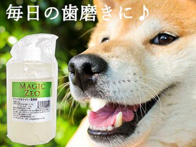 仙台ラー油