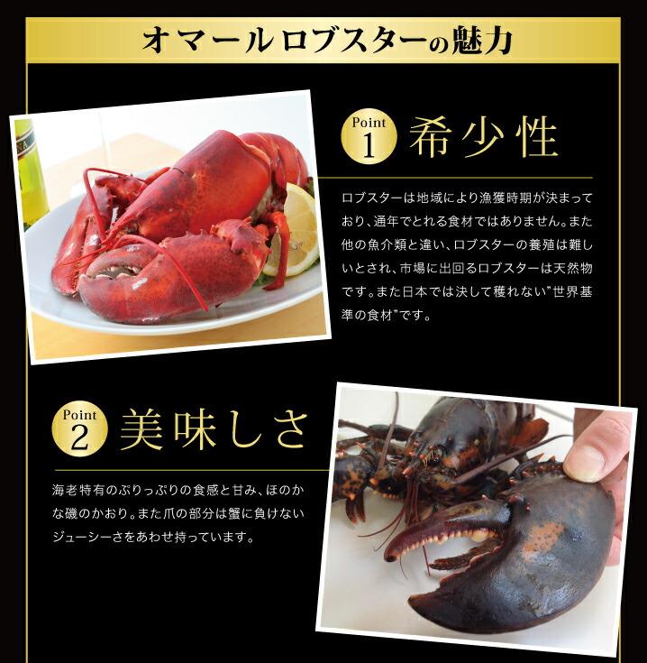"""image_lobster/ オマールロブスターの魅力 希少性 Point.1 ロブスターは地域により漁獲時期が決まっており、通年でとれる食材ではありません。また他の魚介類と違い、ロブスターの養殖は難しいとされ、市場に出回るロブスターは天然物です。また日本では決して穫れない""""世界基準の食材""""です。 美味しさ Point.2 海老特有のぷりっぷりの食感と甘み、ほのかな磯のかおり。また爪の部分は蟹に負けないジューシーさをあわせ持っています。"""