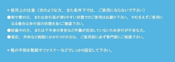 ROSIO ロシオ かかとのない健康シューズ M101 メタルピンク「通販百貨 Happy Puppy」