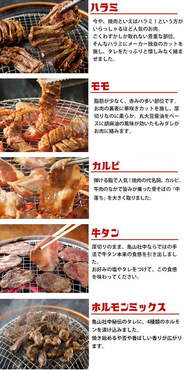 亀山社中 焼肉 バーベキューセット 2 はさみ・説明書付き「通販百貨 Happy Puppy」