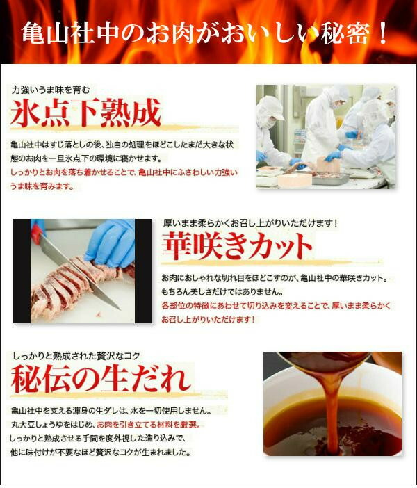 亀山社中 焼肉 バーベキューセット 3 はさみ・説明書付き「通販百貨 Happy Puppy」