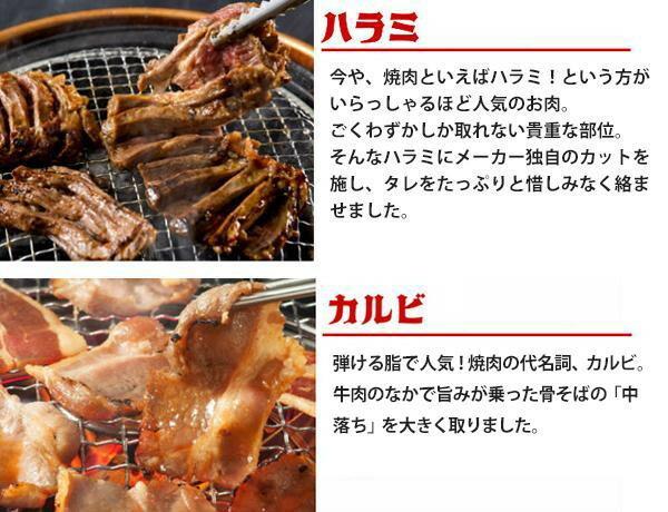 亀山社中 焼肉 バーベキューセット 9 はさみ・説明書付き「通販百貨 Happy Puppy」
