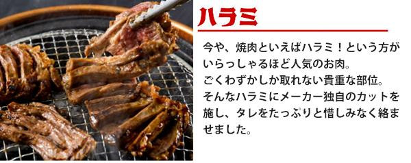亀山社中 焼肉 バーベキューセット 10 はさみ・説明書付き「通販百貨 Happy Puppy」