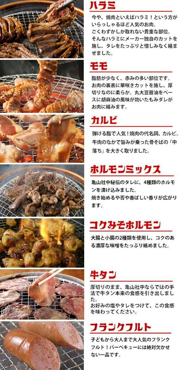 亀山社中 焼肉 バーベキューセット 11 はさみ・説明書付き「通販百貨 Happy Puppy」