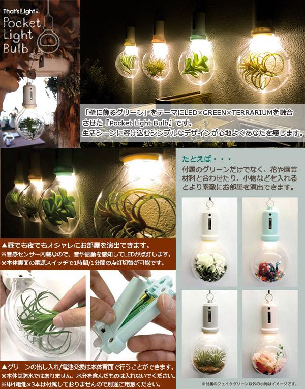 The Electric Bulb Type Wall Hangings Light Which Can Create Green And An Accessory Splendidly