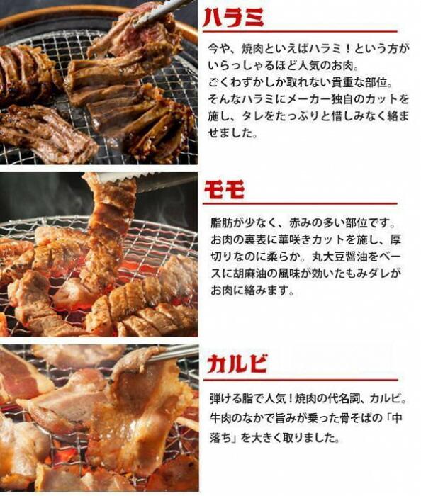 亀山社中 焼肉 バーベキューセット 5 はさみ・説明書付き「通販百貨 Happy Puppy」