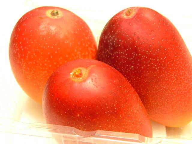 《超早出し》宮崎産完熟ミニマンゴーです。