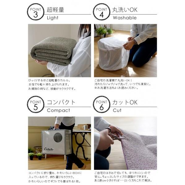 洗えるラグ PPL-1