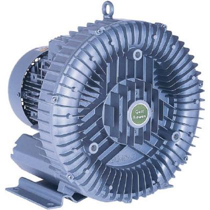 電動送風機渦流式高圧シリーズガストブロアシリーズ0.6/0.85kW