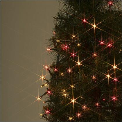 LED GARDEN ローボルト LEDストレート マルチ(イエロー・オレンジ・シャンパンゴールド・レッド) 全長:12m LGT-100WM