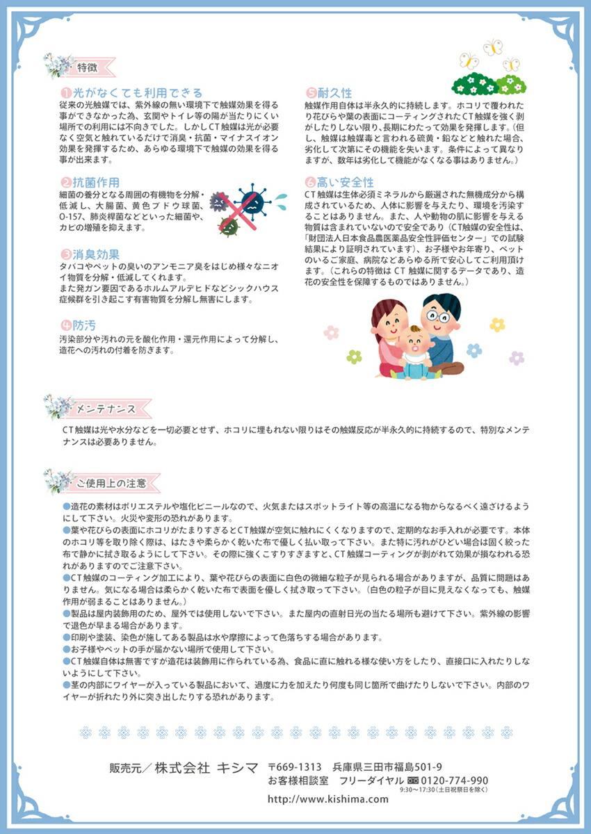 ボタニック 【CT触媒】 シーリングライト 3灯 Ivy アイビー