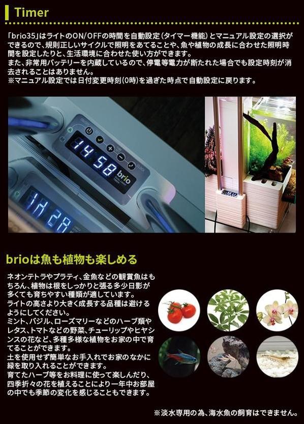 brio35 50Hz仕様 (ホワイト)