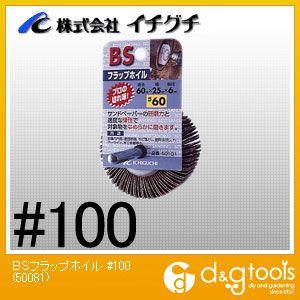 BSフラップホイル  #100 50081