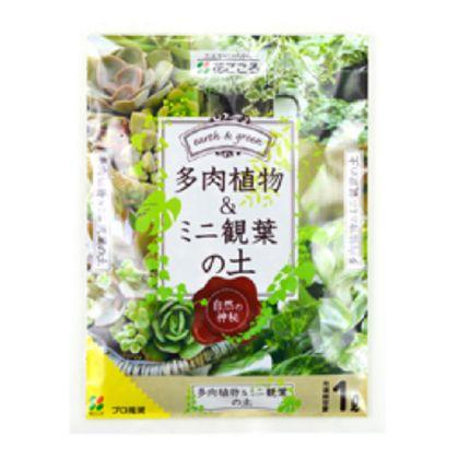 花ごころ 多肉植物・ミニ観葉の土 1L