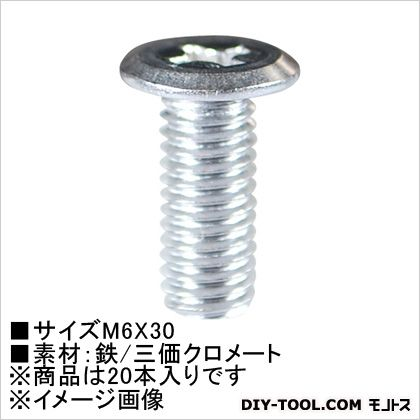 超極低頭小ねじ(ステン)  M6×30 61-585 20 本