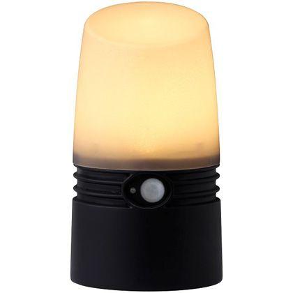 アプローチセンサーライトS電池式   LGB-02