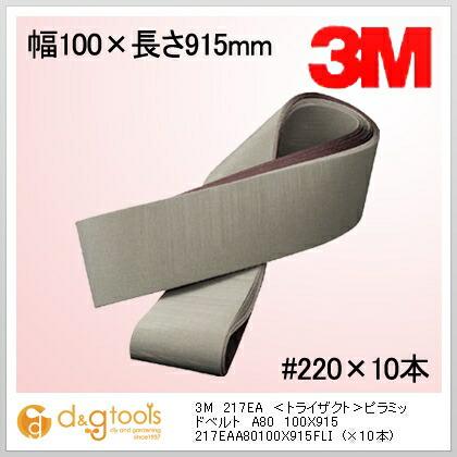 217EA <トライザクト>ピラミッドベルト  100×915 A80 10 枚