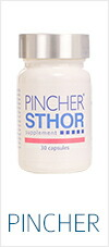 PINCHER Sthor Supplement