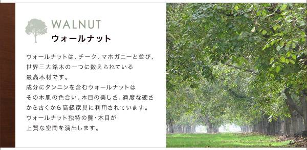 天然木ウォールナットモダンデザインダイニング 【Wyrd】ヴィールド